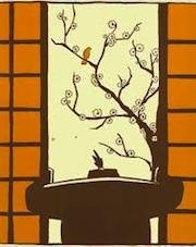 sumo_orange_1
